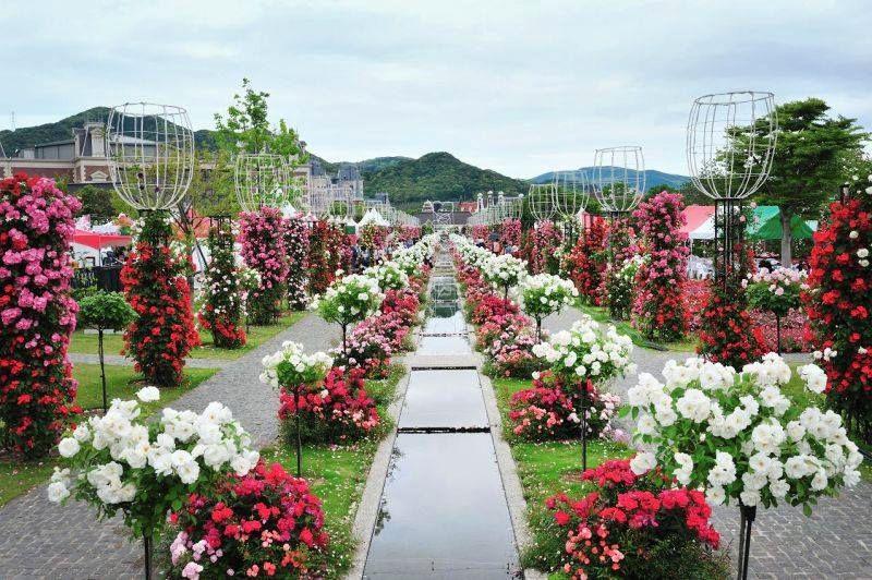 Quảng trường lễ hội hoa hồng Bulgaria