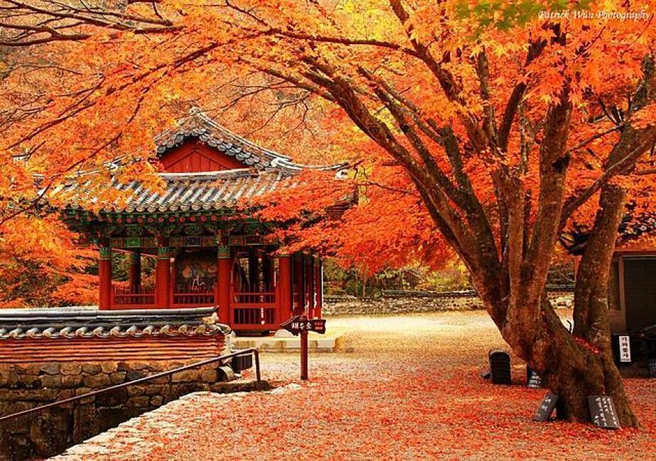 Chứng minh tài chính du lịch Hàn Quốc